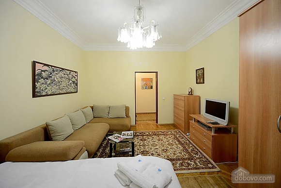Amazing spacious equipped by last word of technics apartments in the center of Kiev, Studio (68925), 001