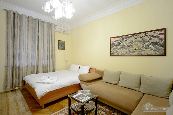 Amazing spacious equipped by last word of technics apartments in the center of Kiev, Studio (68925), 016