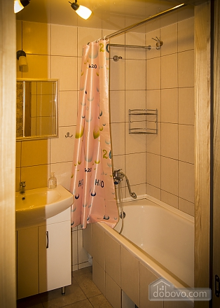 Great stylish apartment in the center, Un chambre (64270), 010