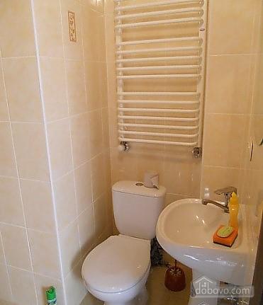 Nice apartment, One Bedroom (42211), 007