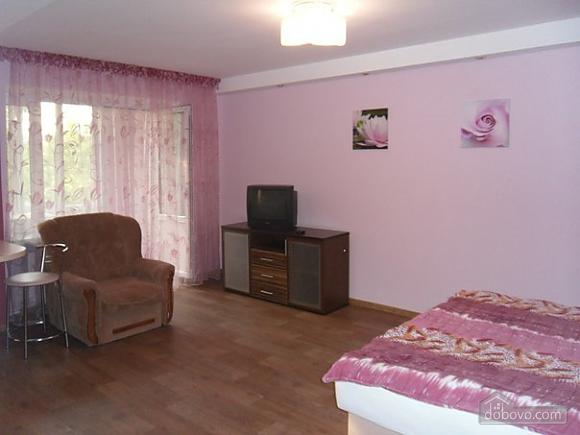 Apartment in Ulan-Ude, Studio (11042), 001