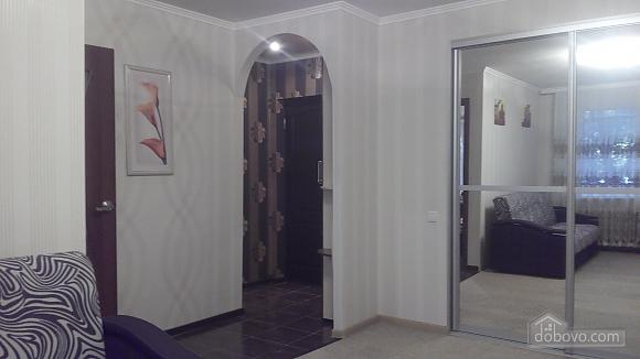 Квартира у самому центрі Запоріжжя, 1-кімнатна (11384), 002