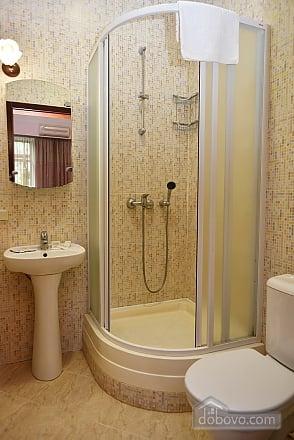 Luxury apartment in a quiet center, Una Camera (79586), 019