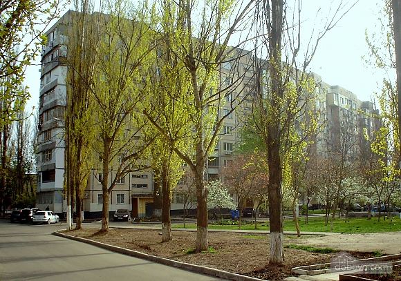 Apartment on Tairova  near Nezalezhnosti square, Monolocale (75576), 018