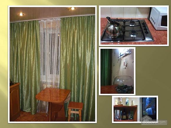 Apartment in Zaporozhye city center, Monolocale (82566), 004
