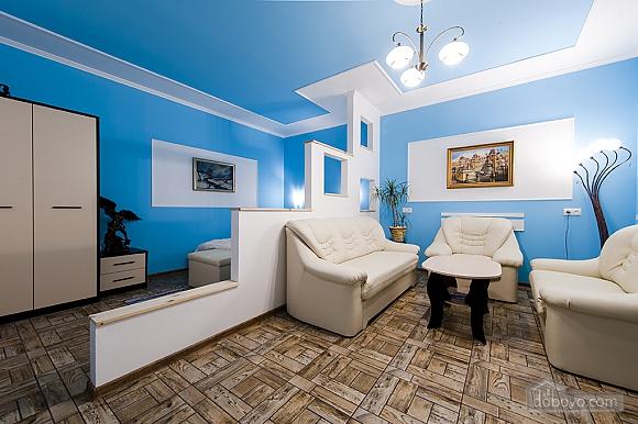 Квартира в центре Львова, 1-комнатная (64026), 001
