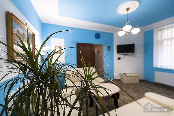 Квартира в центре Львова, 1-комнатная (64026), 023