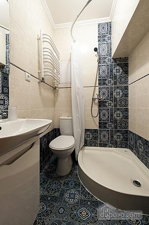 Квартира в центре Львова, 1-комнатная (64026), 027