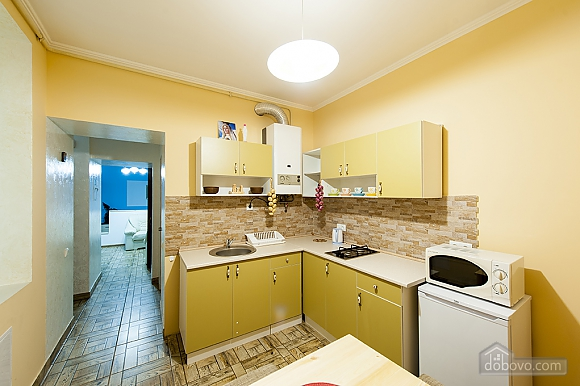Apartment in the center of Lviv, Monolocale (64026), 032