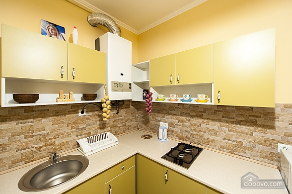 Apartment in the center of Lviv, Monolocale (64026), 033