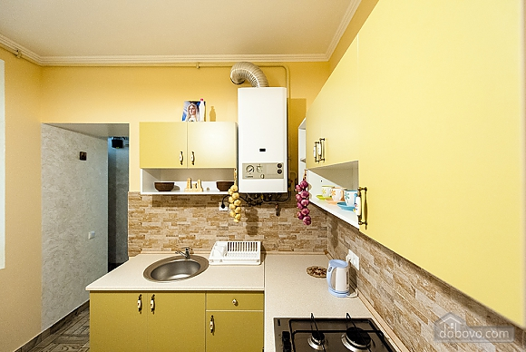 Apartment in the center of Lviv, Monolocale (64026), 036