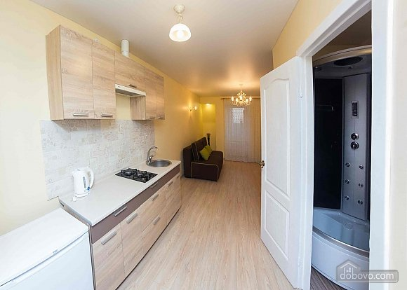 Apartment in the city center, Monolocale (85830), 002