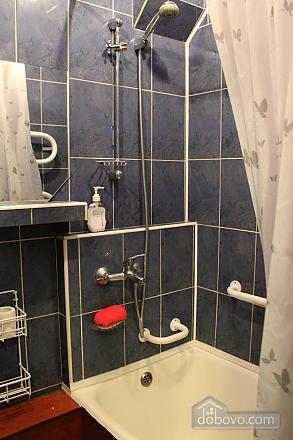 Cozy apartment in Kiev, Studio (92453), 006