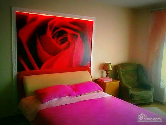 Apartment in Cherkassy, Una Camera (61756), 001
