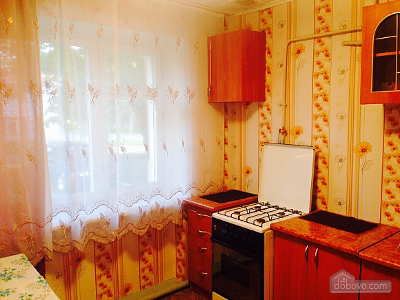 Apartment in Cherkassy, Una Camera (61756), 002