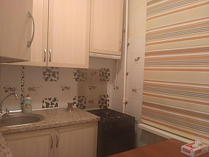 Apartment near to Druzhby Narodiv station, Studio, 002