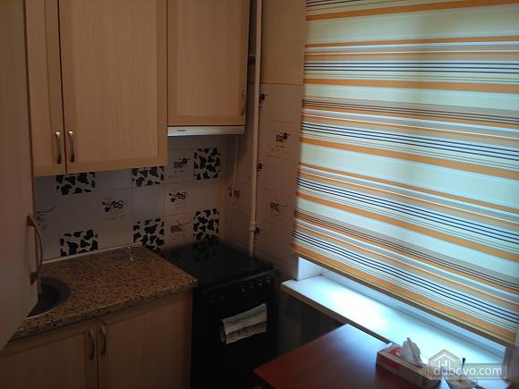 Apartment near to Druzhby Narodiv station, Studio (37657), 015