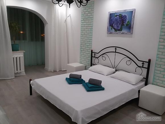 Excellent apartment on Obolon, Un chambre (94636), 001