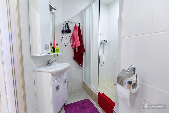 Apartment in Most-City, Two Bedroom (70448), 012