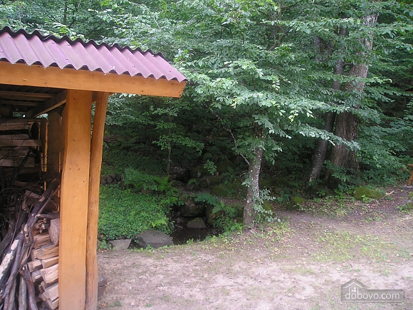 Wellspring in the forest, Due Camere (58654), 003