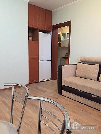 Apartment in Mega-City, Una Camera (13914), 010