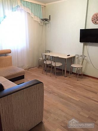 Apartment in Mega-City, Una Camera (13914), 014