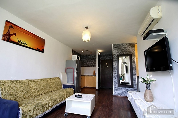 Comfortable apartment near Assuty, One Bedroom (47391), 006