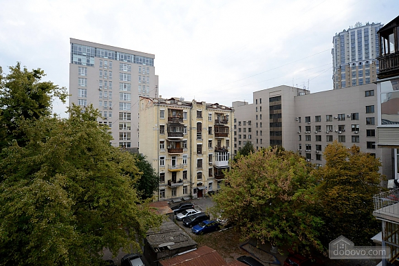 Cozy spacious and comfortable apartment in the center of Kiev, Zweizimmerwohnung (74734), 010