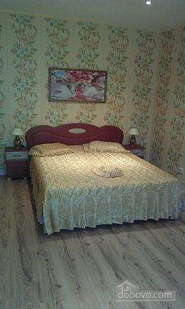 Luxury apartment in the city center, Un chambre (27887), 001