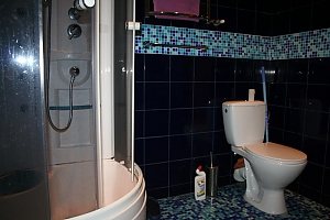 VIP apartment in Krivoy Rog, Un chambre, 005