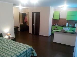 Апартаменты во Львове, 1-комнатная, 001