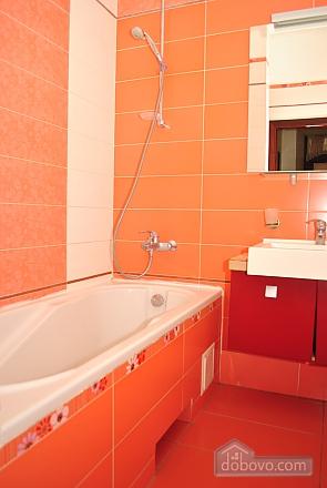 Apartment with a terrace, Una Camera (10507), 012