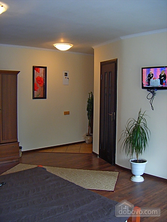 Apartment in the city center, Monolocale (65603), 003