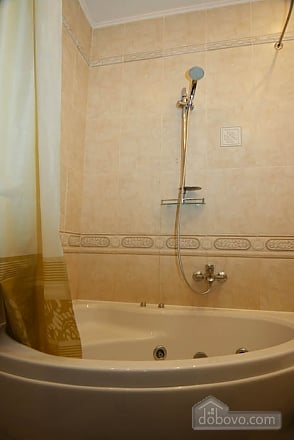 Decent apartment in the center of Kharkov, One Bedroom (13042), 006