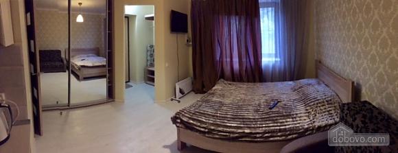 Apartment in Odessa, Monolocale (22247), 006