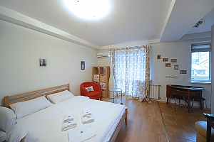 Spacious European studio with the terrace in the center of Kiev, Studio, 003