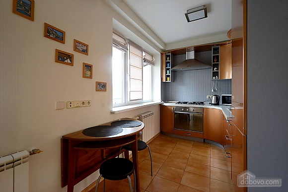 Spacious European studio with the terrace in the center of Kiev, Monolocale (58088), 008