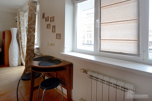 Spacious European studio with the terrace in the center of Kiev, Monolocale (58088), 009