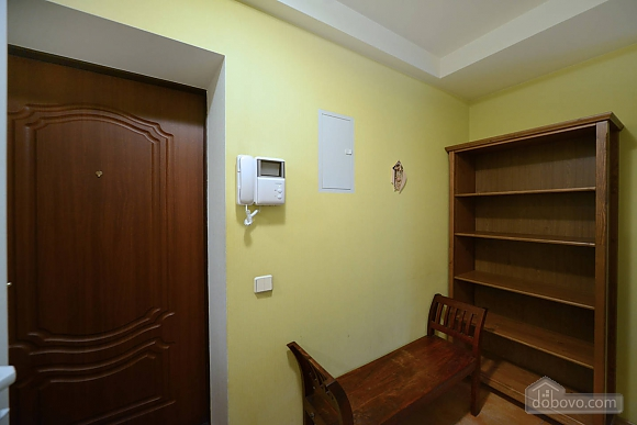 Spacious European studio with the terrace in the center of Kiev, Monolocale (58088), 014