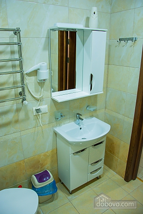 Apartment in Truskavets, One Bedroom (68643), 007