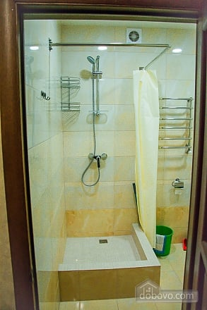 Apartment in Truskavets, One Bedroom (68643), 011