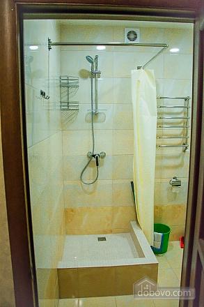 Apartment in Truskavets, Una Camera (68643), 011