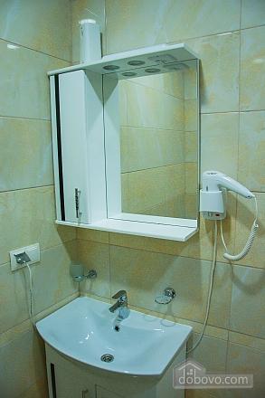 Apartment in Truskavets, Una Camera (68643), 012