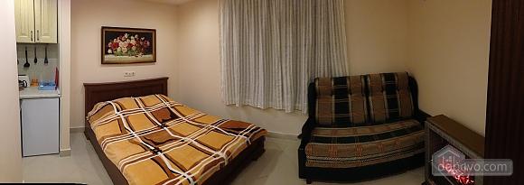 Апартаменты Крокус, 1-комнатная (70876), 003