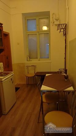 Apartment in the center of Lviv, Studio (55679), 017