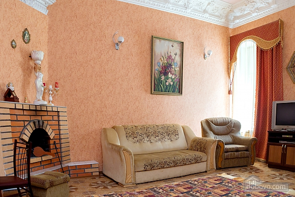 Beautiful and comfortable apartment with a fireplace in the center of Nikolaev, Studio (47537), 002