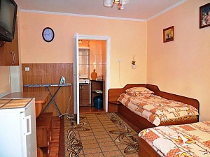 Accommodation in Morshyn, Studio, 005