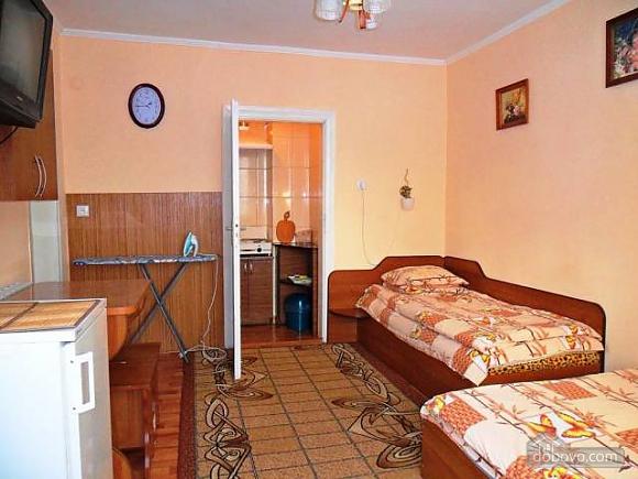 Accommodation in Morshyn, Studio (38013), 005