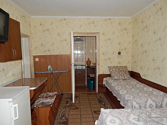 Accommodation in Morshyn, Studio (38013), 002