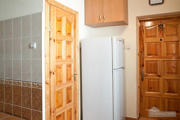 Comfortable apartment in the center of Lviv, Studio (54366), 008